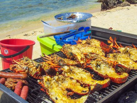 fish and lobster barbeque with totof tours