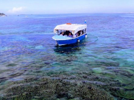 glass bottom boat excursion with Totof Tours Mauritius