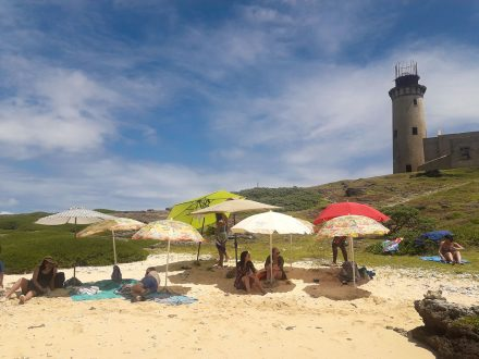 Totof Tours 3 Island Boat Excursion with Barbeque Ile aux Phare