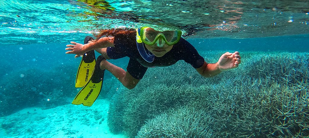 Totof Tours Snorkelling Excursion Blue Bay Marine Park Mauritius