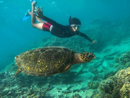 Totof Tours Mauritius Snorkeling Excursion Blue Bay